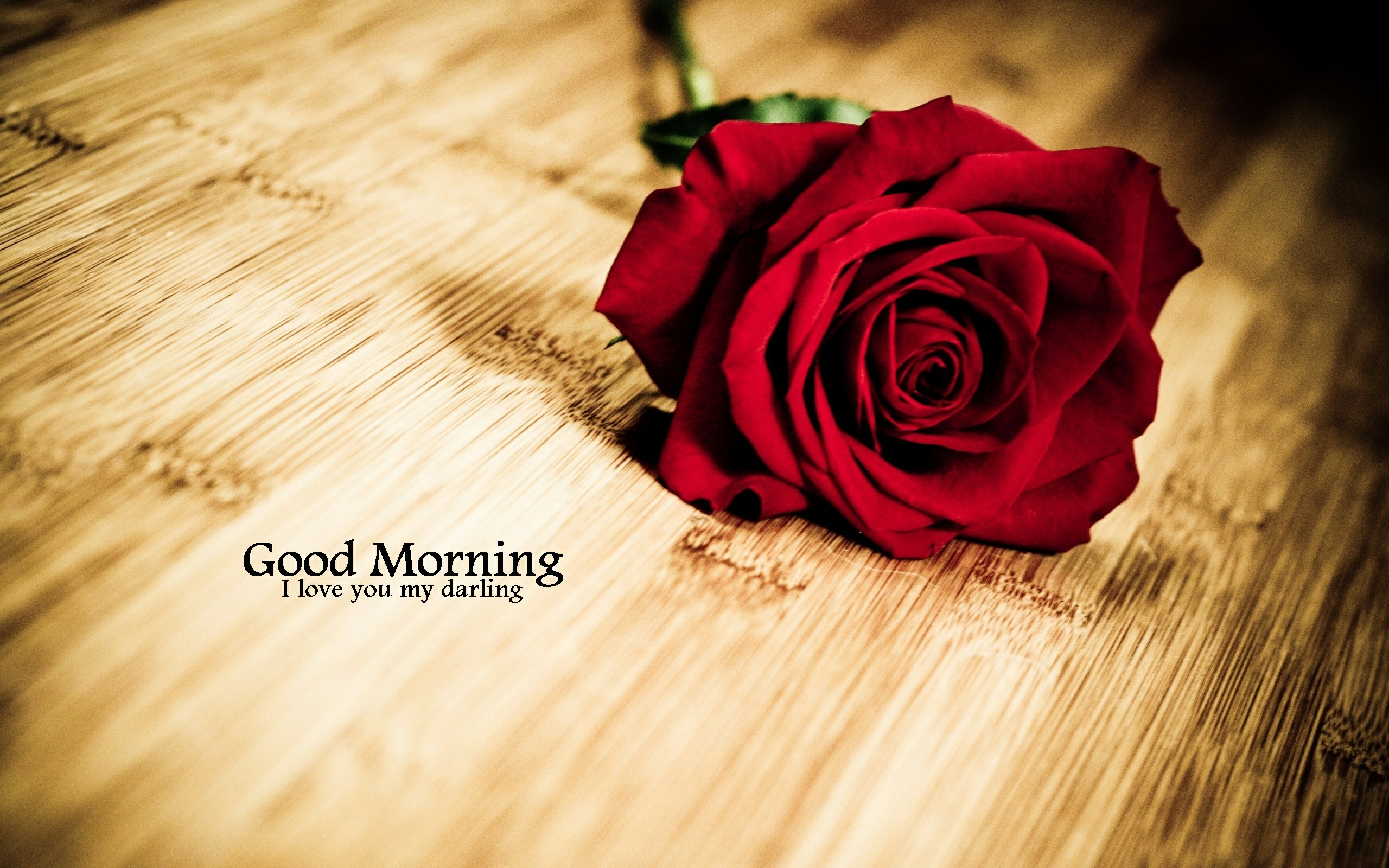 Good Morning Images Hd Wallpapers Images Photos