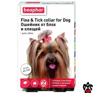 Ошейник от блох для собак мелких пород BEAPHAR, 65 см (белый)