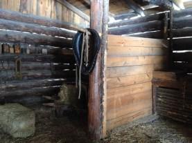 A horse barn.