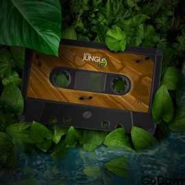 Audiojungle Emotional Free Download