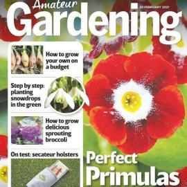 Amateur Gardening February 20 2021 Free Download