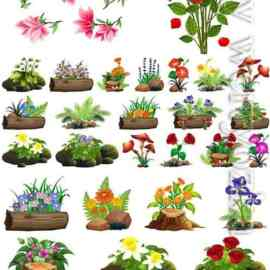 Flowers and floral arrangements in vector Free Download