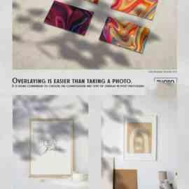 CreativeMarket Leaf Shadow Overlays 6341914 Free Download