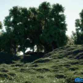 Forester v1.5 Cinema 4D R25 + Expansion Packs 1 & 2 Free Download
