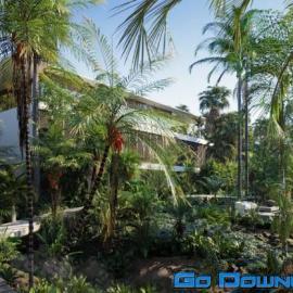 Globe Plants Bundle 15 Palm World Free Download
