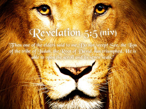 Revelation-5-5