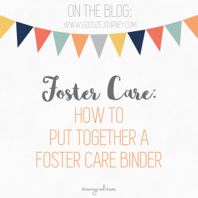 Foster Care - How To Put Together A Foster Care Organization Binder
