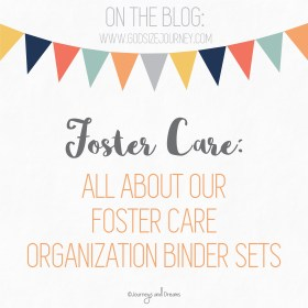 Foster Care - All About Our Foster Care Organization Sets