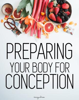 Infertility - Preparing for Conception 3