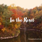 In the Reset