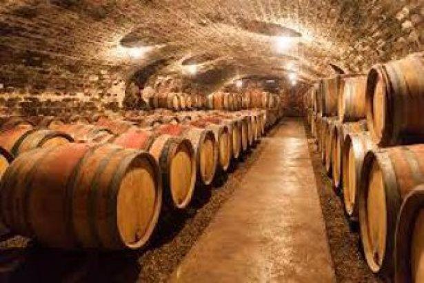 emirates-reveals-details-of-wine-investment