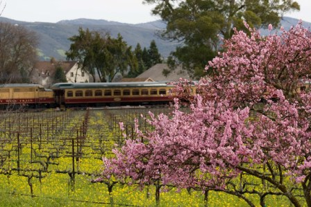 napa valley wine train cart