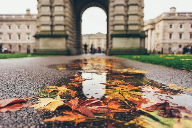 Rainy afternoon puddles in Dublin, Ireland