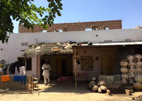 bishnoi village