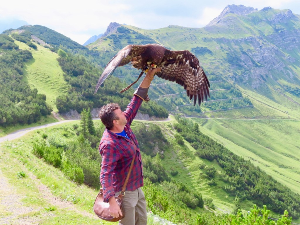 Norman and his Golden Eagle.