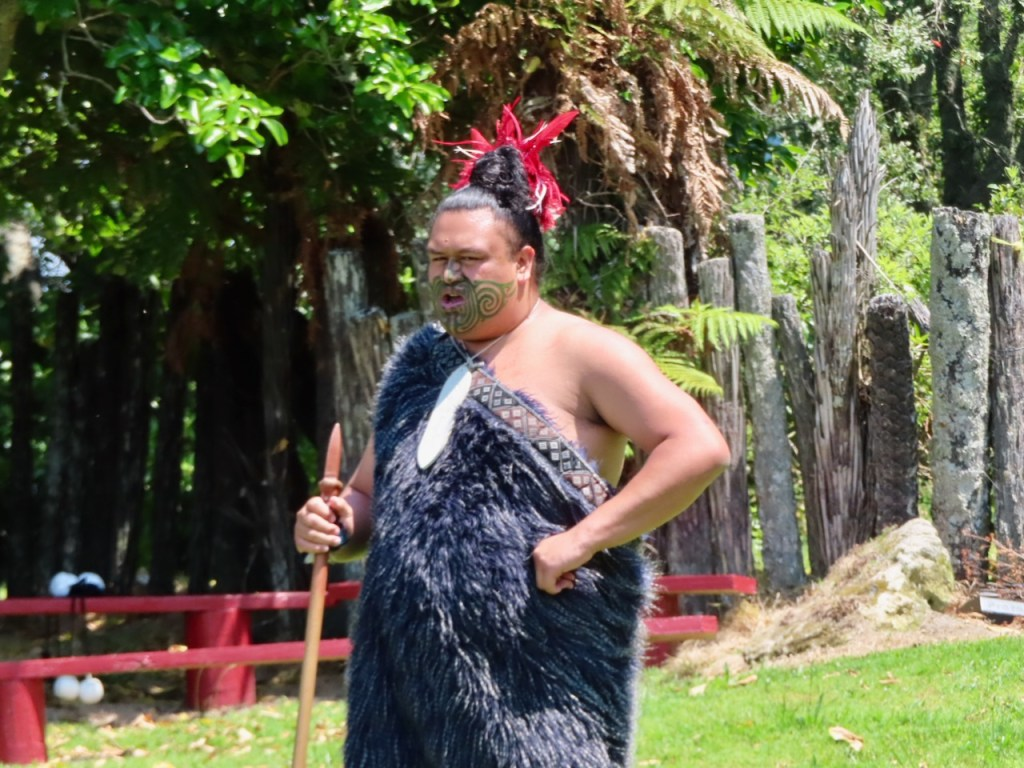Maori Elder