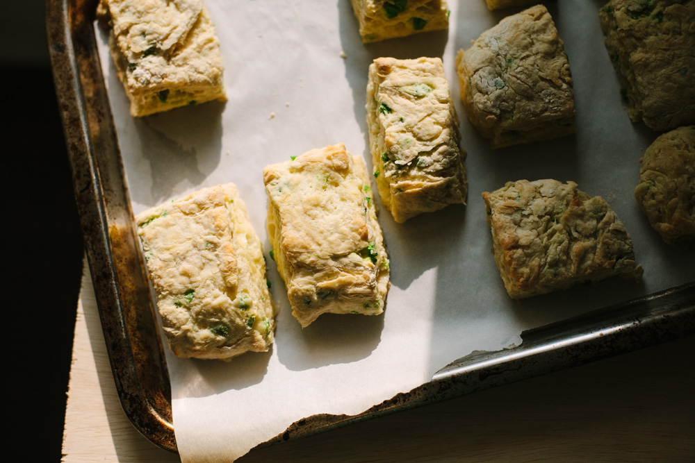 jarlsberg jalapeno biscuits / go eat your bread with joy