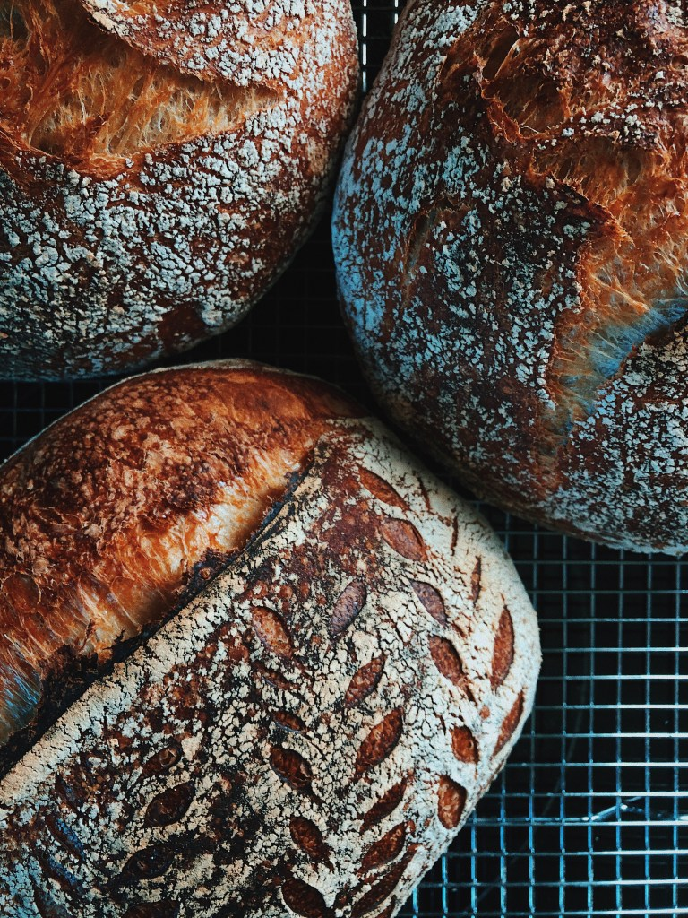 Meet Joe Gomez, Nashville sourdough baker / Go Eat Your Bread with Joy