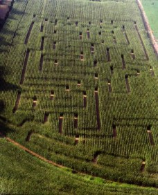 2nd Maze