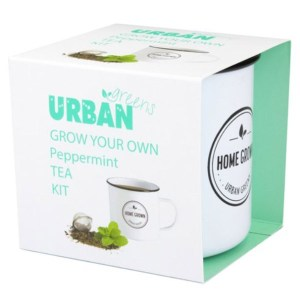 Urban Greens Grow Your Own Tea - Peppermint