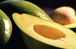 avocado-recept-superfood-tips
