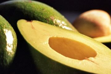 avocado-recept-superfood-tips
