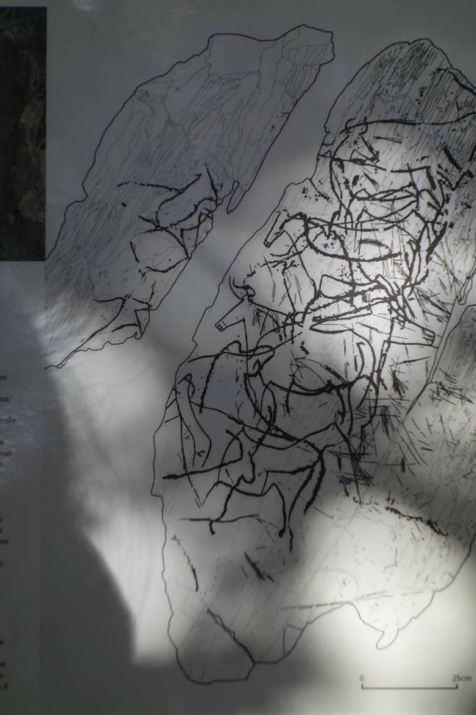 ペナスコーザの岩絵