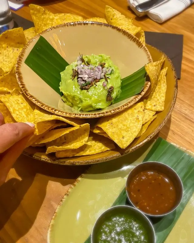 Guacamole with Chapulines part of Frontera Cocina Taste of Oaxaca Seasonal Menu and Fun Random Facts about Mole including How To Make an Easy Mole from Chef Rick Bayless