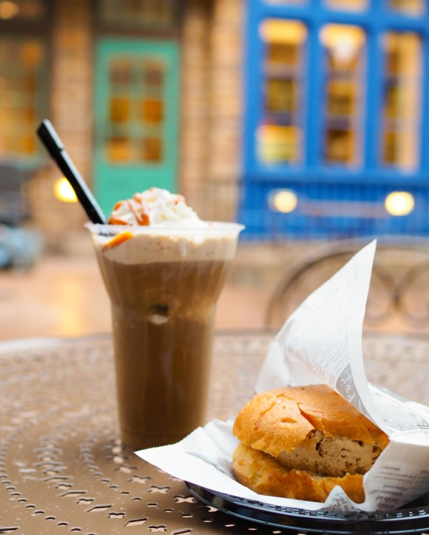 Taste of Epcot Food and Wine Festival guide ice cream at France pavilion