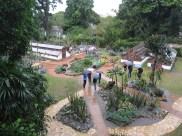 Botanical Gardens in Rio de Janeiro