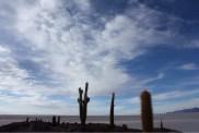 Sky from Fish Island