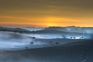 Ein Hauch von Sonnenaufgang über verbrannter Erde - das ist schon viel besser als vorher!