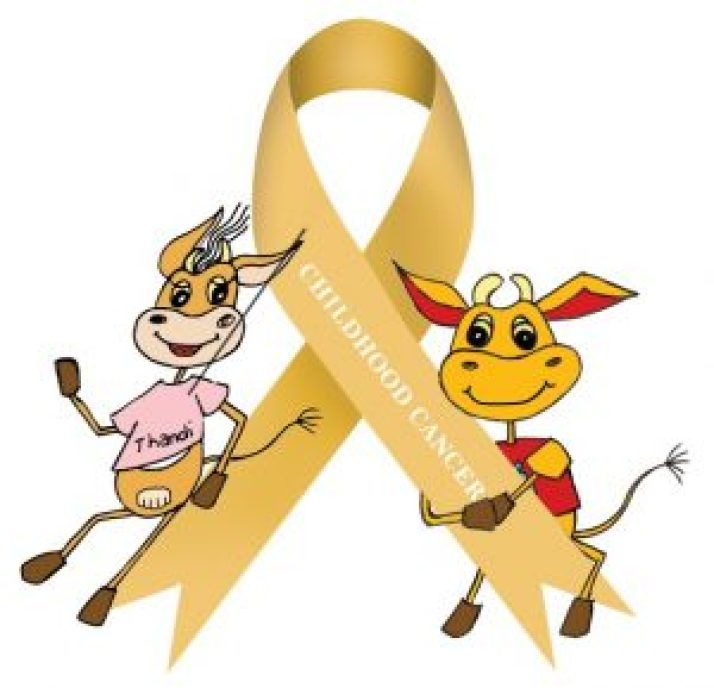 GOLD : September is Childhood Cancer Awareness month and the focus of this month is awareness and educating communities on the Early Warning Signs of Childhood Cancer to ensure early diagnosis and therefore a more successful outcome of treatment. SUPPLIED