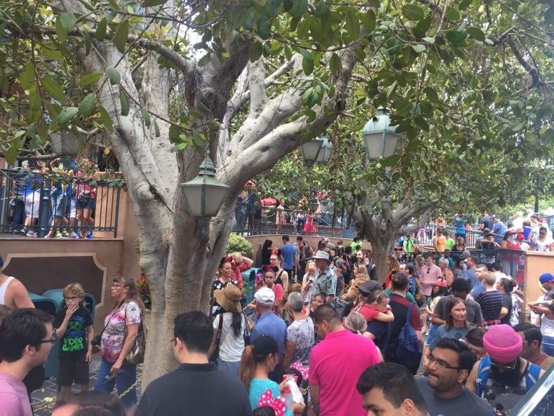 Disneyland is an amusement park.