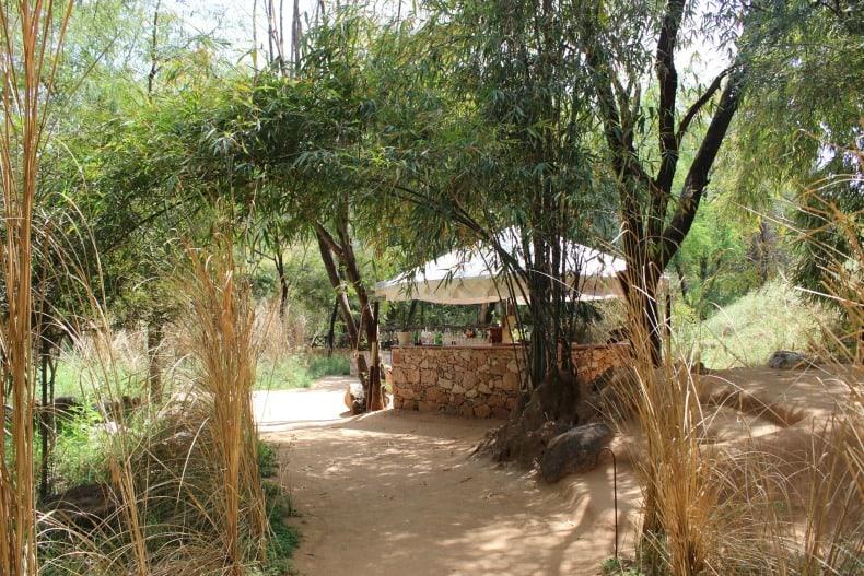 Ranthambore National park, India, Sher Bagh, safari,