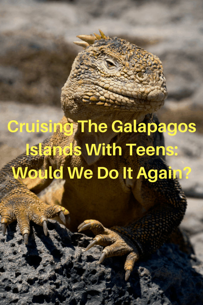 Our family took a five day small ship cruise in the Galapagos Islands in Ecuador. It was a remarkable experience and one that I highly recommend that you take with your teens. | beach, birds, catamaran, child, cruise, cruise the Galapagos Islands, cruising the Galapagos Islands, Ecuador, Galapagos Islands, Galapaguera, Gardner Bay, marine iguanas, older child, sea lions, Seaman Journey, seaman journey catamaran, snorkelling, Suarez Point, Witch Hill