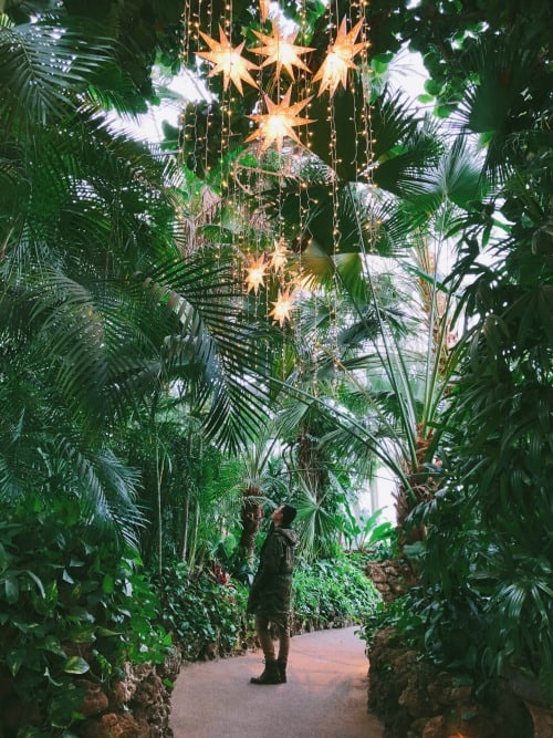 Bloedel Conservatory near Vancouver airport