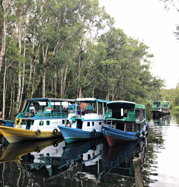 Tanjung Punting National Park.