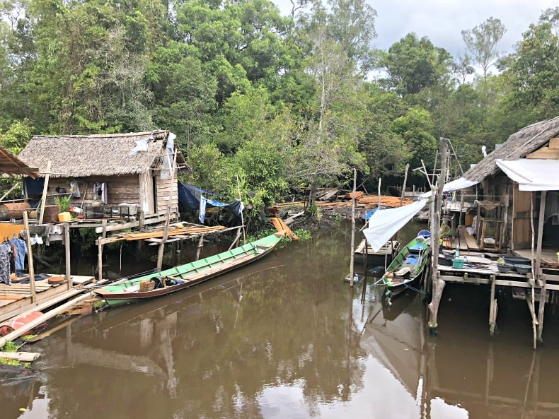 Tanjung Punting National Park
