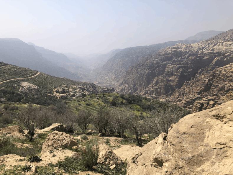 Dana Biosphere Reserve