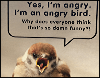 buzzworthy connections from hallmark angry bird cards