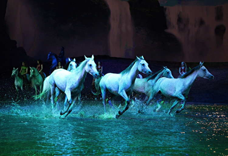 odysseo horses running through water