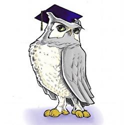 WGU Western Governors University mascot owl