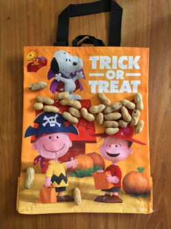trick or treat bag, peanuts movie promotional campaign, safeway/vons/albertons