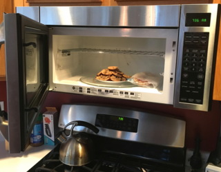 storing uneaten food in the microwave oven, safely away from the pets