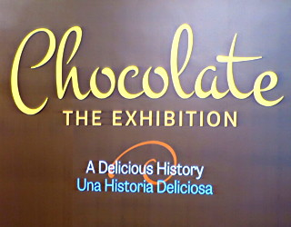 trip review writeup kids chocolate the exhibition denver museum nature science