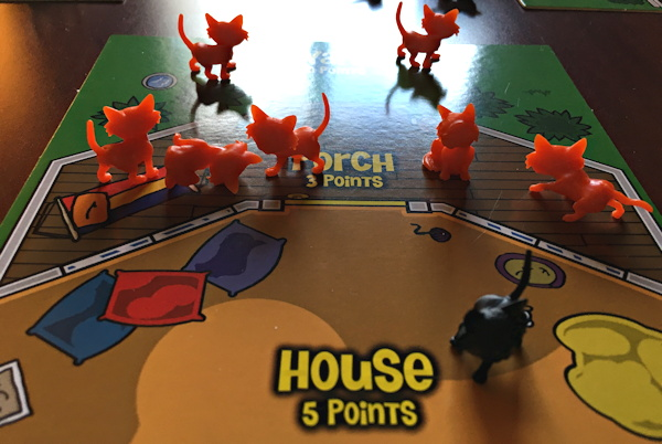 Cats all over my house in 'here, kitty, kitty' game