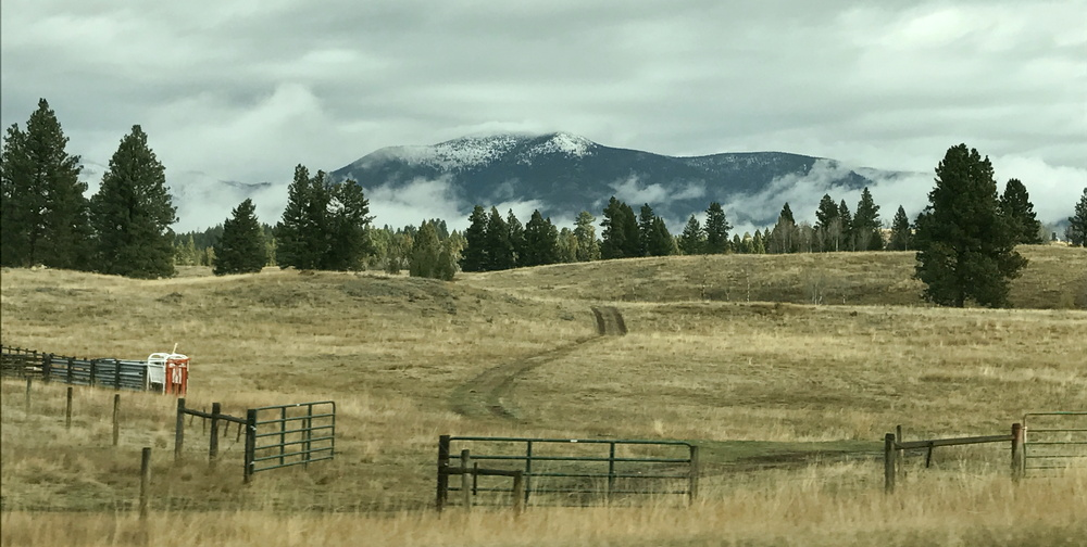 montana rural hillside with snow-covered mountains and fog