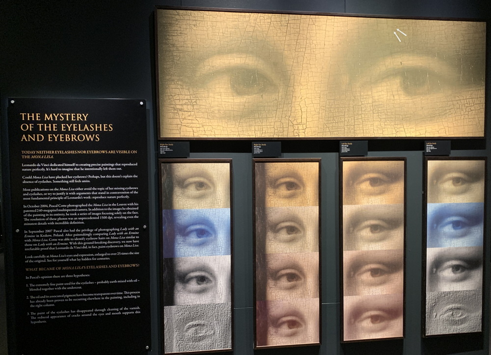 dmns leonardo da vinci - mona lisa - eyebrows eyes