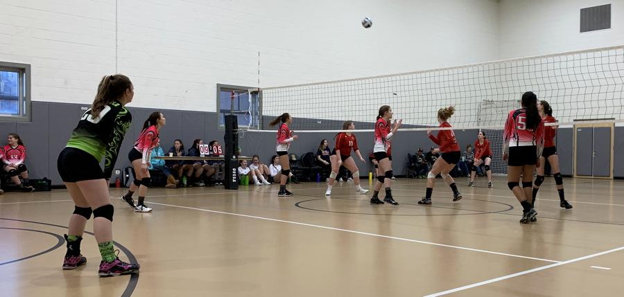 high school volleyball - club volleyball - school gym